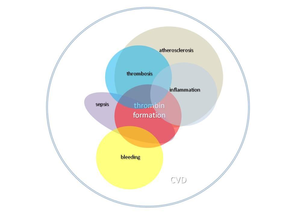 Presentatie_ERC_2014